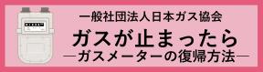 一般社団法人日本ガス協会